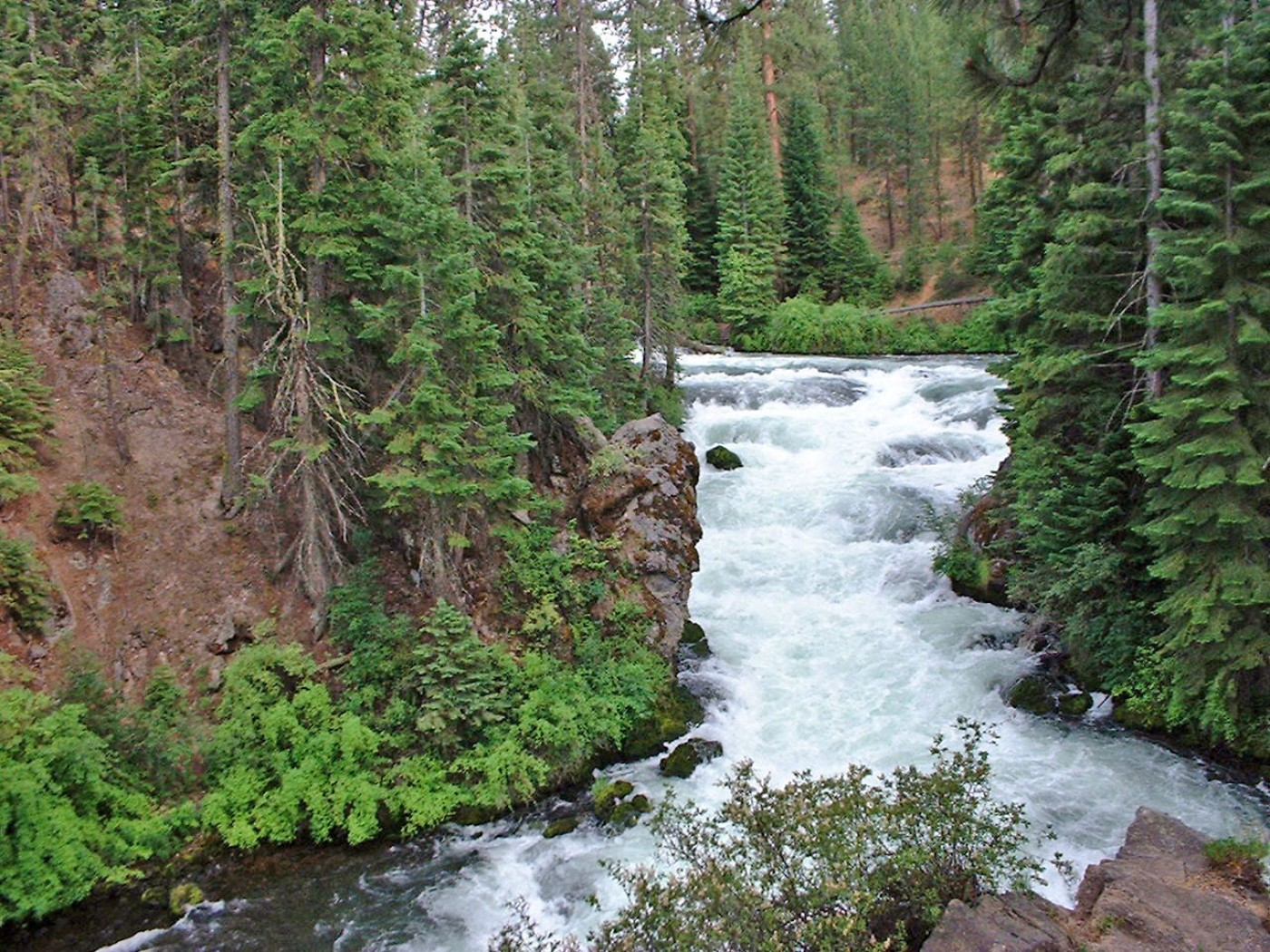 Upper Deschutes River - Native Fish Society